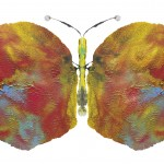 The Possibility of It: Please Save The Butterflies
